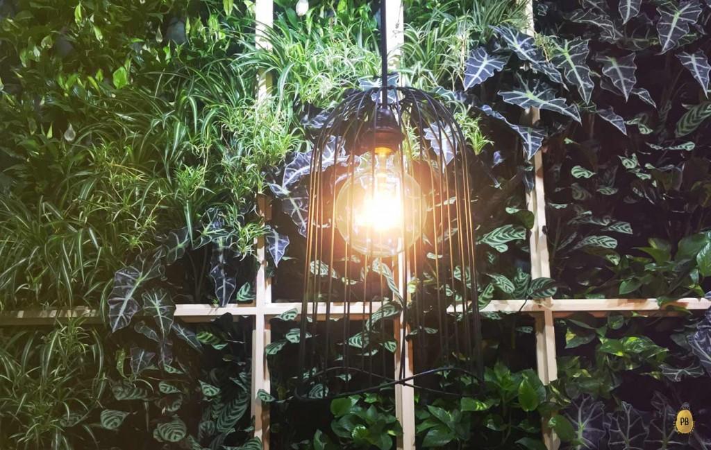 mahalo_piante-tropicali_patata-bollente